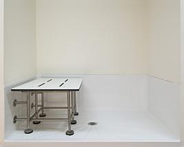 Bariatric Shower Base